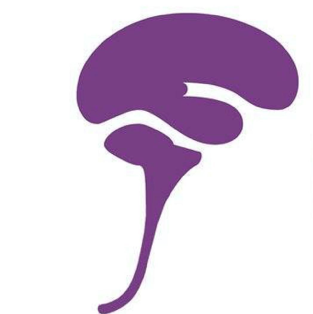 Suomen Chiari- ja syringomyeliayhdistys ry-logo