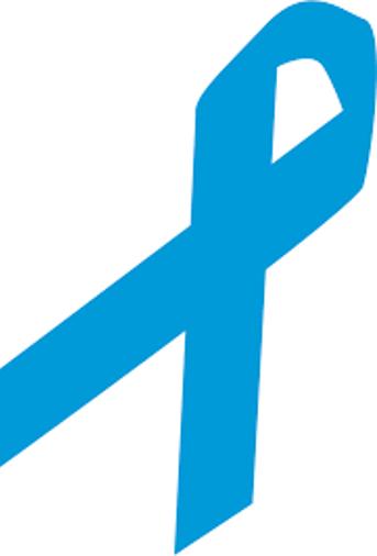 Sininauhaliiton  Esteetön työ EMPPA